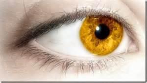imagenes ojos raros el color de ojos mas raro del mundo imagui