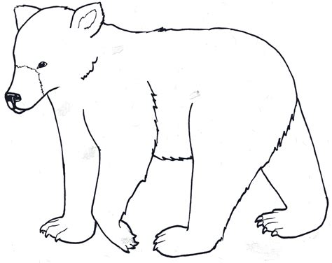 cute baby polar bear coloring pages clipart best