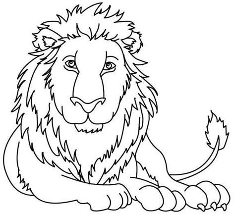 imagenes de animales omnivoros para dibujar animales carnivoros para dibujar imagui