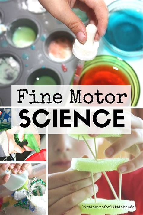 Science Activities For Kids I Am And For Kids On Pinterest   fine motor science activities for kids little bins for