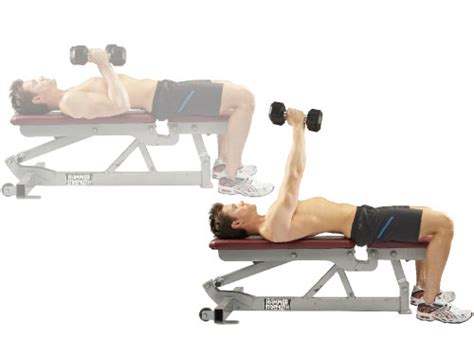 dumbbell bench press v shape workout