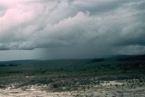 imagenes de invierno con lluvia file 0169 lluvia en la gran sabana jpg wikimedia commons