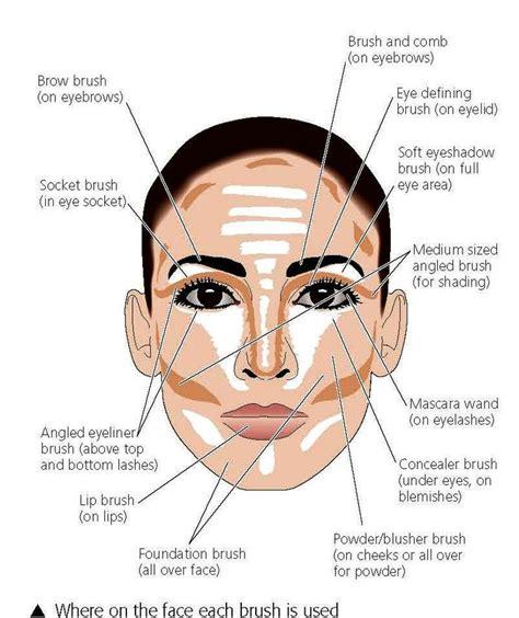 contour makeup diagram top 10 tips and tutorials that ll make your look