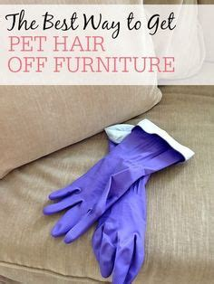 how to get dog hair off comforter 1000 ideas about tire furniture on pinterest tire