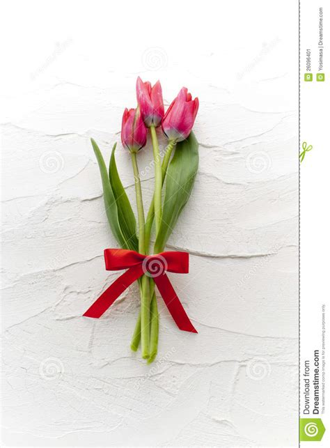 flower gift tulip flower gift stock image image 26096401