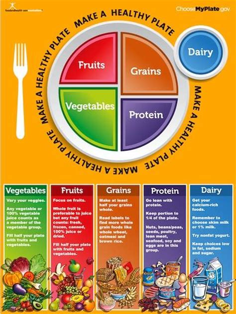 How To Make A Floor Plan On Word by My Plate Poster Myplate Poster 16 15 Nutrition Education Store