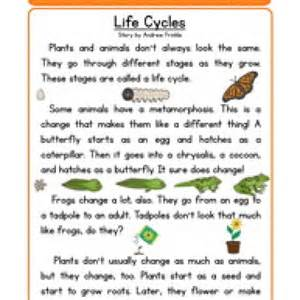 second grade reading comprehension worksheet life
