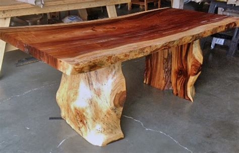 "Natural Edge Dining Table With Tree Trunk Legs, 40"" x 8' 0"" long x 30"" tall   Eclectic   Dining"