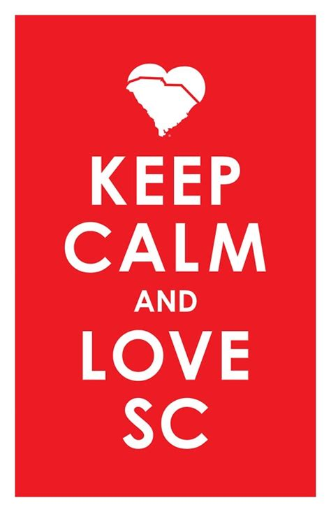Southern Comfort Gotta Be Me by 164 Best Home Sweet Home Beautiful Sc Images On
