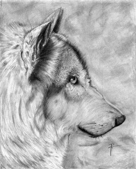 imagenes a lapiz de lobos lobo por rivego dibujando