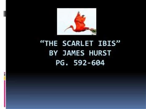 themes of scarlet ibis by james hurst ppt the scarlet ibis by james hearst powerpoint
