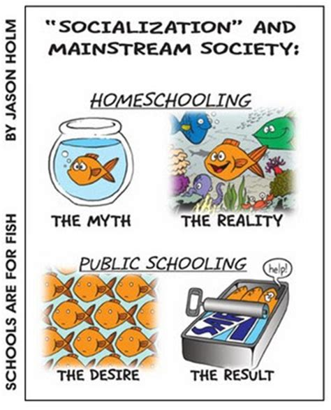 socialize like a homeschooler a humorous handbook for homeschoolers books raising teaching saints catholic