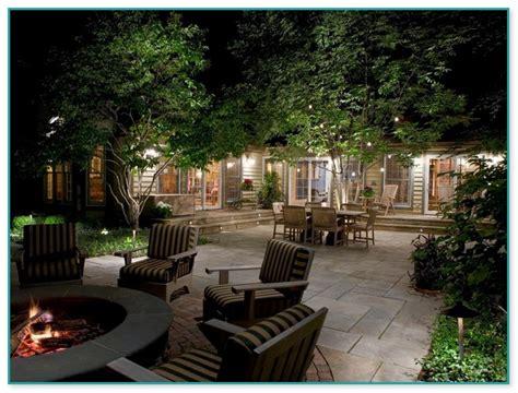 landscape lighting ideas trees best birch trees for landscaping