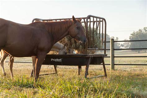 Hay Racks For Horses In Pasture pasture feeder