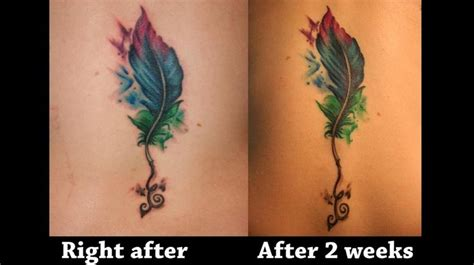 watercolor tattoos ct 19 best amazing design images on