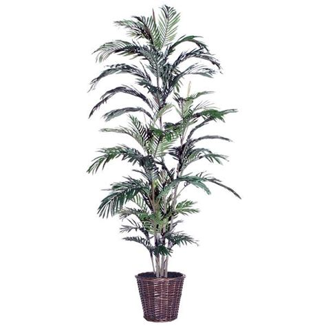 american made unlit 6ft or 7ft trees vickerman 26650 6 areca palm txx1060 palm home office tree elightbulbs