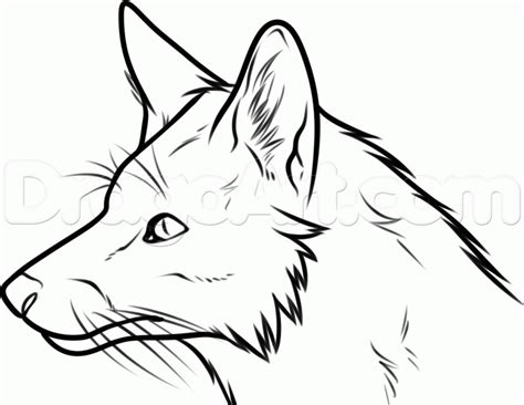 coloring page fox head how to draw a fox head step by step forest animals
