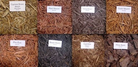 much ado about mulch everything homeowners need to kno