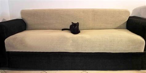 cat sofas cat friendly sofa slipcovers cat friendly sofa thesofa