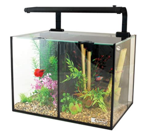 animates betta design aquarium mono betta aquariums php