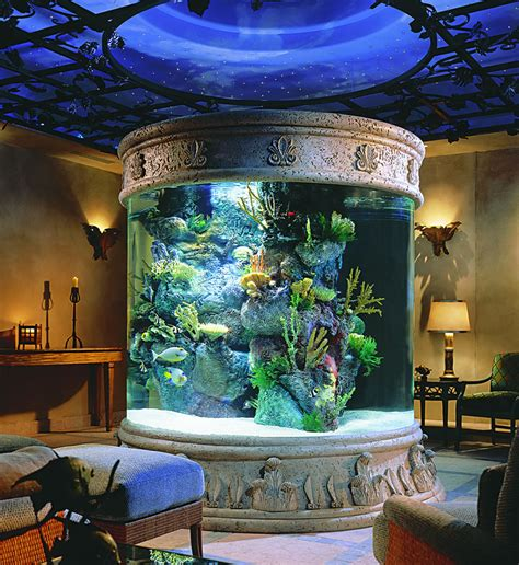 beautiful home aquarium interior home design