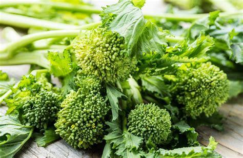 broccoli come si cucinano cime di rapa a cosa fanno bene e come si cucinano cure
