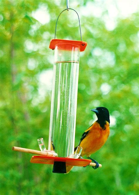 oriole feeder or 1 by peter s feeders this by petersfeeders