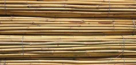 bureau vallé reliure tuteurs bambou montoliu