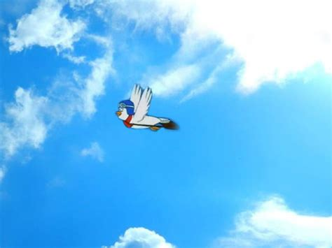 doodle pigeon look up in the sky it s a bird it s a plane or is