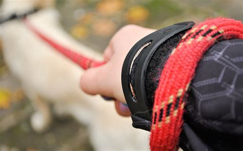 how to hold a puppy how to hold a s leash 4 steps with pictures wikihow