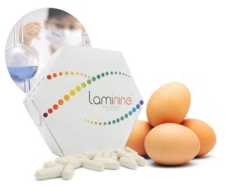 Obat Laminine obat laminine herbal harga promo