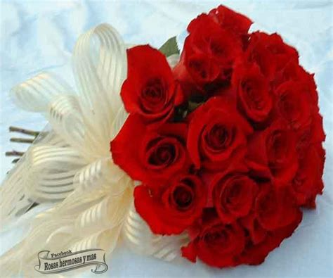 imagenes de rosas hermosas ramos de flores bellas related keywords ramos de flores
