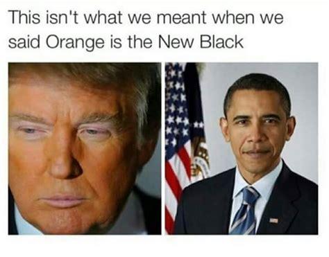 Donald Trump Cheeto Meme