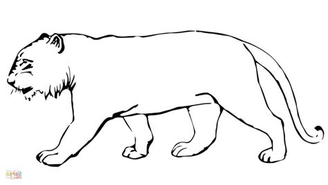 coloring pages online without printing tiger outline drawing aggressive tiger head close up hand