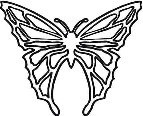 cool butterfly coloring pages cool butterfly illustration in contemporary style coloring