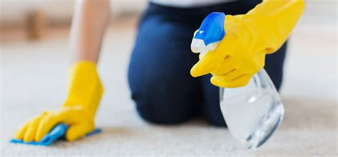 how to spot clean a carpet heaven s best carpet cleaning