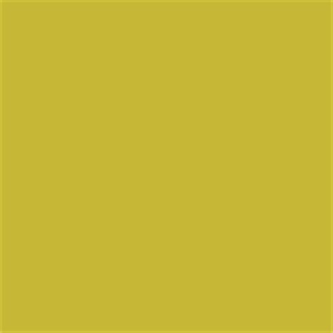 osage orange paint color sw 6890 by sherwin williams view interior and exterior paint colors