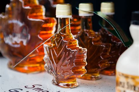 maryland maple syrup maple syrup may not so sweet future in bay region