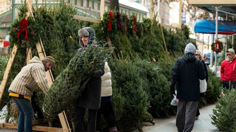 bq half price christmas trees sale tree shortage is driving up prices realtor 174