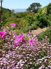 Botanical Gardens California Of California Botanical Garden