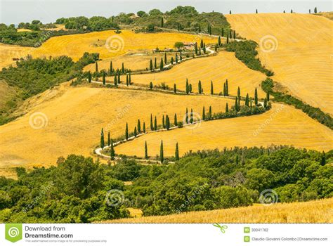 Animal Castle Piano Cy 6047b landscape in val d orcia tuscany stock photography image 30041762