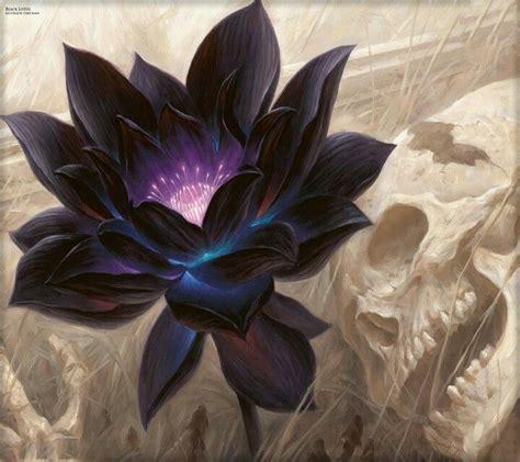 Designs Of by 25 Trending Black Lotus Ideas On Lotus