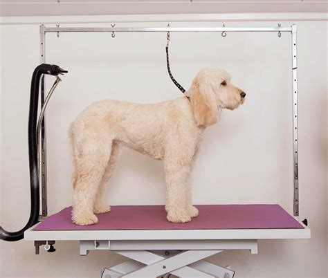 lightweight portable dog grooming diy dog grooming arm onther design idea and decor best