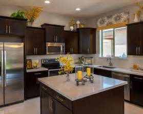 Ideas For On Top Of Kitchen Cabinets Kitchen Decor Houzz