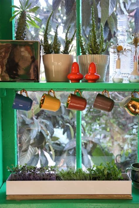 Window Sill Garden Vegetables 60 Best Herbs And Vegetables Grow Them Inside Images On
