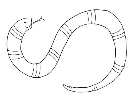 snake coloring page snake coloring pages free for children