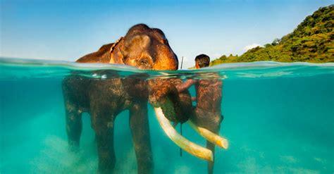 imagenes hermosas surrealistas hermosas fotos de diferentes pa 237 ses debajo y sobre el agua