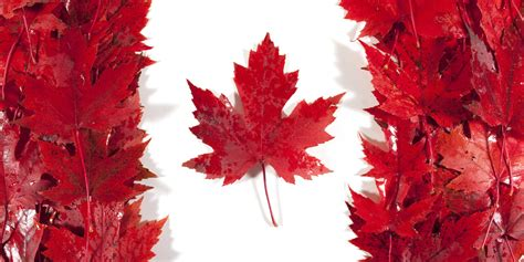 images of canada o canada will you free your glorious land of prostitution