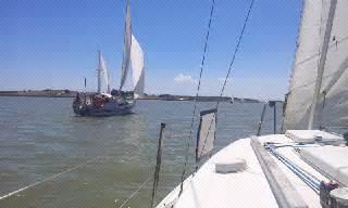 dragon boat racing goolwa cvetko s on tour milang goolwa race