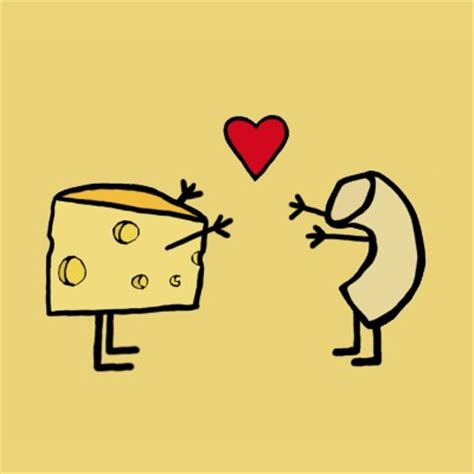 macaroni and cheese we love you photos cheese a student can t brie without it